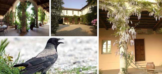 Il Palazzo Barzizza e il curioso soprannome