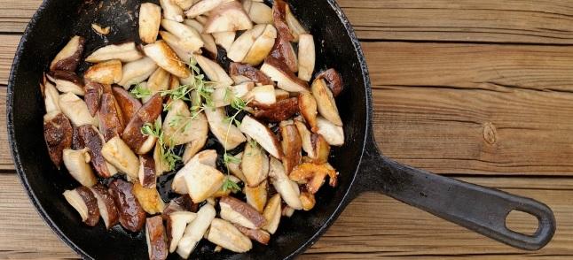 Motta Visconti: la 42esima Sagra del Fungo Porcino il 21 e 22 settembre