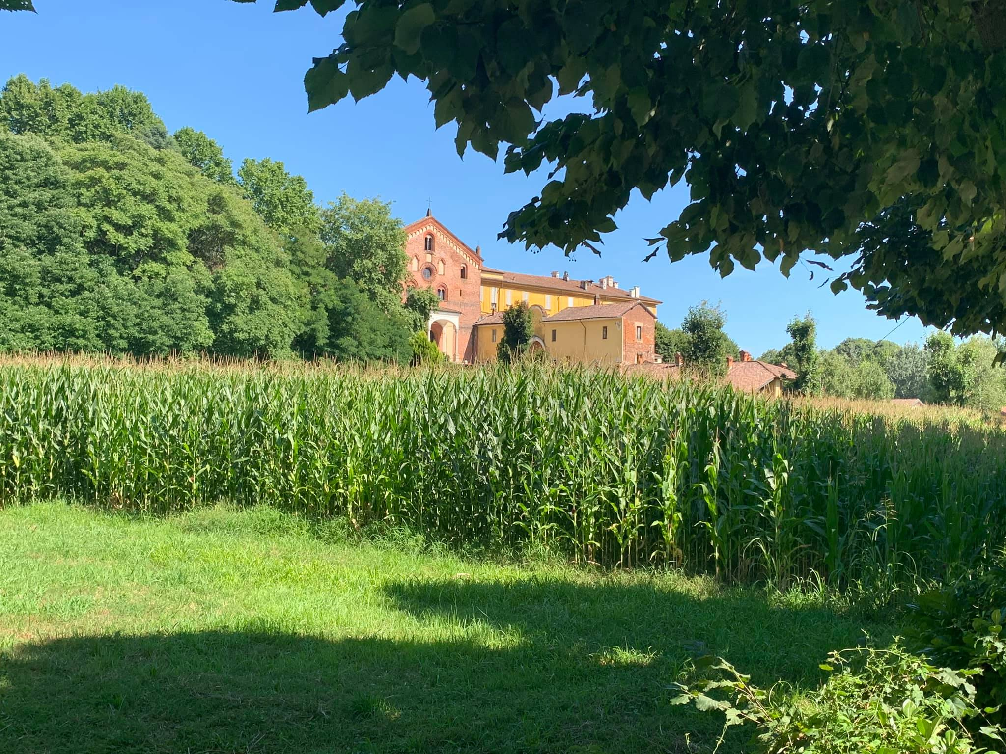 Morimondo, le Giornate Europee del Patrimonio il 26 e 27 settembre